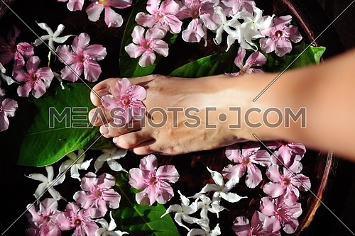 Closeup photo of a woman feet at spa salon on pedicure procedure. Legs care concept