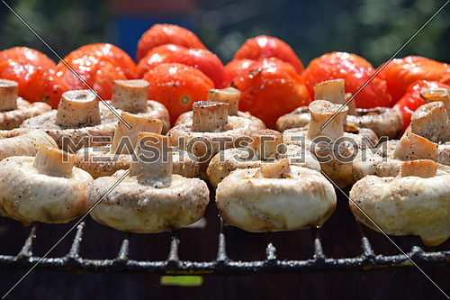 Vegetables in salt and spices being cooked on char grill outside, white champignons portobello mushrooms and red small tomatoes