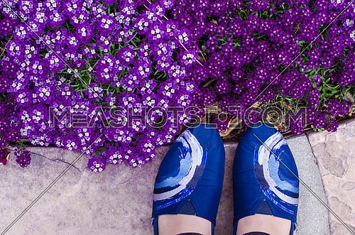 A selfie of feet wearing blue shoes next to purple flowers