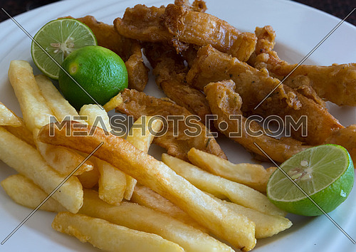 In the photo fried calamari served with fries and three lime as a garnish.
