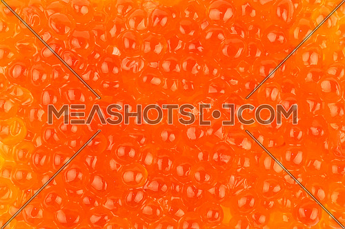 Background pattern of salmon fish red caviar close up, elevated top view, directly above