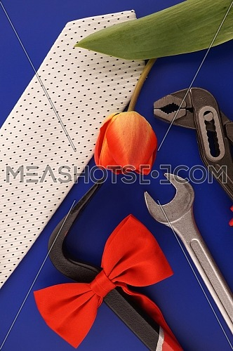 Crowbar tied with a red bow, spanners, necktie and tulip over a blue background and free copy space for your greeting