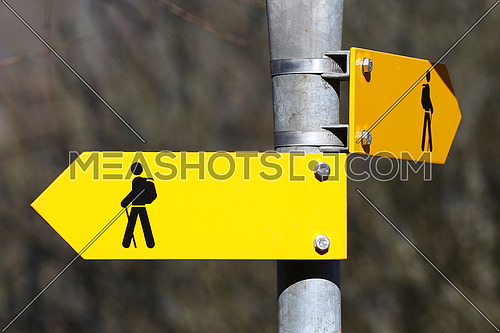 Blank yellow direction signs on metal pole for pedestrian trails in the woods