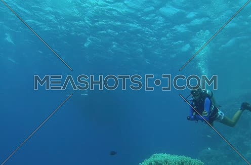 Mid shot for scuba divers under water at The Red Sea