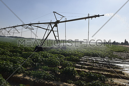 Pivot irrigation of agricultural fields