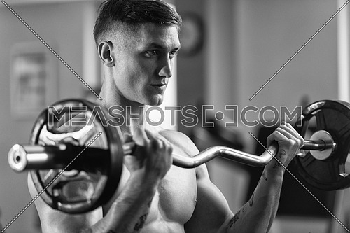 Young Muscular Man Doing Heavy Weight Exercise For Biceps With Barbell In Gym