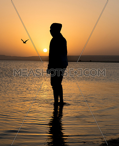 Old man silhouette in the water with sunset in egypt