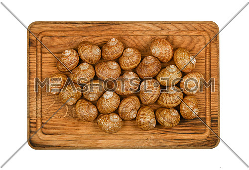 Close up two dozen of escargot land snail shells on brown oak wood cutting board, isolated on white background, elevated top view, directly above