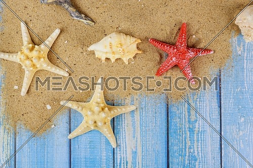 Summer holiday with seashells, starfish, sand frame on wooden board