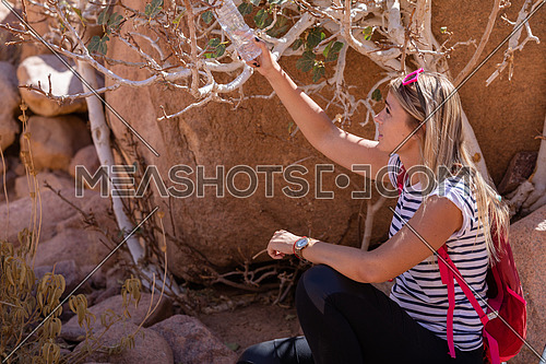 mid shot for female tourist get rest in the shade besides Almond tree with bedouin guide to explore Sinai Mountain for wadi Freij at day.