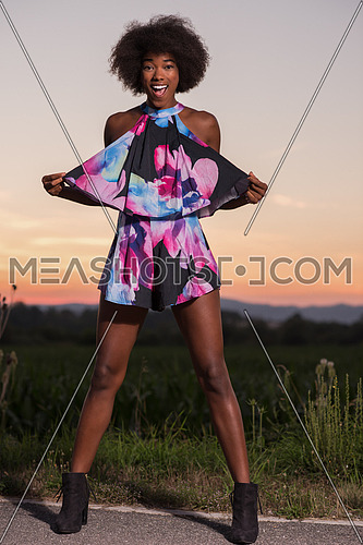 portrait of a young beautiful African American women on a warm summer evening in summer dress with a smile on her face