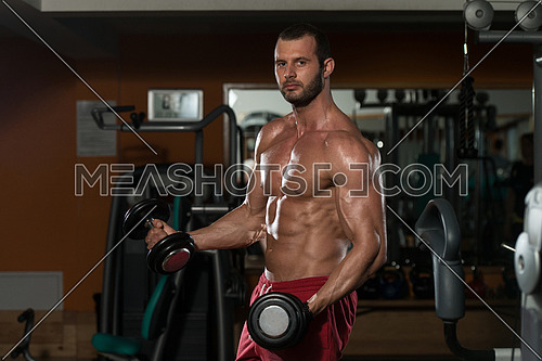Bodybuilder Working Out Biceps - Dumbbell Concentration Curls
