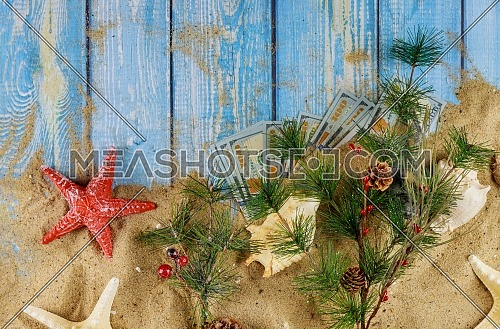 Fir branches with cones with natural seashells and US dollars wooden of blue color background