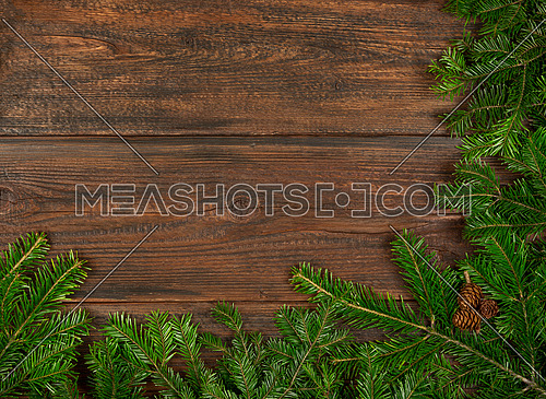 Close up fresh green spruce or pine Christmas tree branches with cones over dark brown wooden planks background with copy space