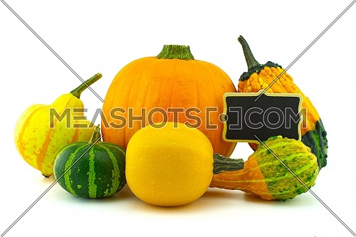 Colorful pumpkin and squash collection and black chalkboard frame isolated on white background