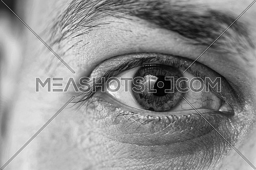 Extreme Closeup Shot Of A Beautiful Man Eye