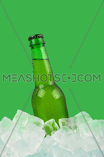 Close up one green glass bottle of cold lager beer on ice cubes at retail display isolated on green background, low angle side view