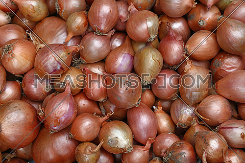 Fresh common bulb onion harvest on retail market display, close up, top view, high angle