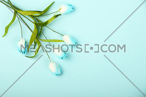 One tiny tulip mulberry paper flowers small bouquet in corner on tender blue background