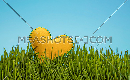 One yellow felt craft stitched heat in fresh green grass over clear blue sky, close up, low angle view