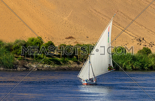 Long shot for a sailboat in the river nile in aswan at day