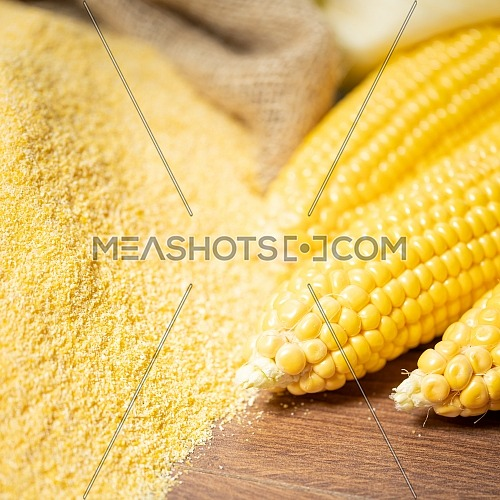 Ripe young sweet corn cob,on stack cornmeal on wooden background,close up.Gluten free food concept