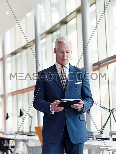 handsome senior business man working on tablet computer at modern bright office interior