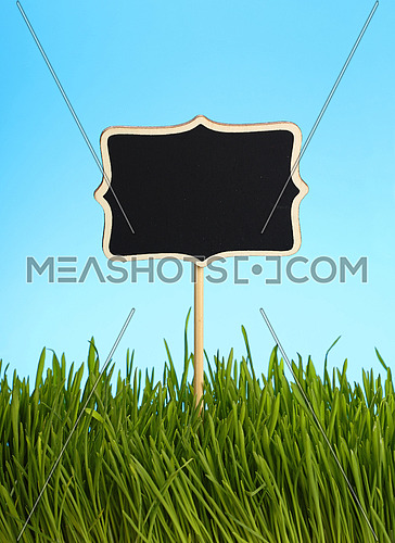Black chalkboard sign in spring fresh green grass close up over background of clear blue sky