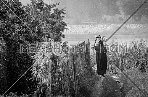 A local egyptian woman in the farm going to wash