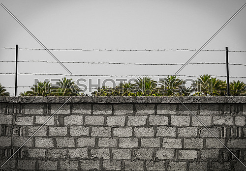 wall with barb wires