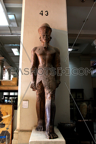 a photo from inside the Egyptian museum showing a display for ancient statue belonging to the pharaohs civilization