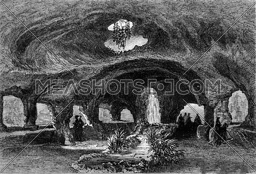 World Expo 1867. Freshwater Aquarium, in the bumper reserve, vintage engraved illustration. Magasin Pittoresque 1867.