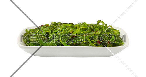 Close up portion of green wakame seaweed salad on white plate isolated on white background, low angle view
