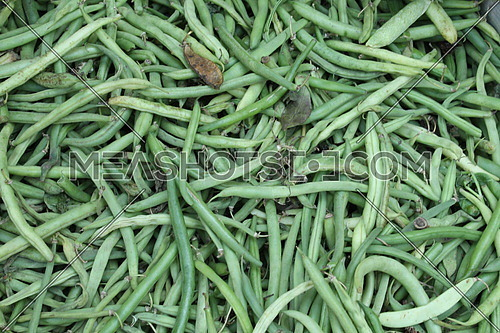 photo for green beans vegetable for sale in the market of an Egyptian village