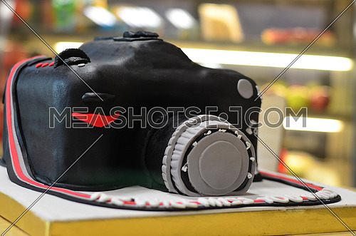 a cake shaped like a camera for celebrations.