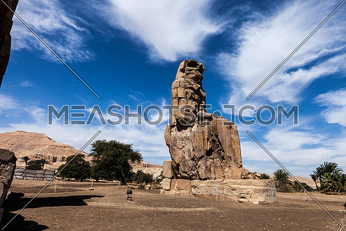 Long shot for statue of  Pharaoh Amenhotep III in loxur at day
