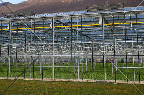 Modern greenhouse with temperature control,irrigation and solar panel operated lighting and windows
