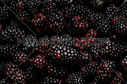 Blackberries filling the frame