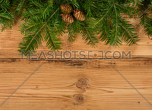 Close up fresh green spruce or pine Christmas tree branches with cones over brown wooden planks background with copy space