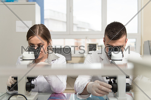 Group Of Scientists Conducting Research In A Lab Environment Looking Into A Microscope