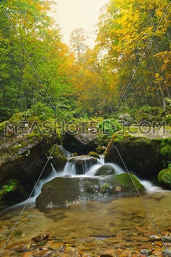 mountain forest landscapecreek with fresh water