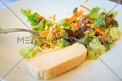 Mixed salad plate with tuna and slice of bread, served at the table with white plate and fork, natural light.