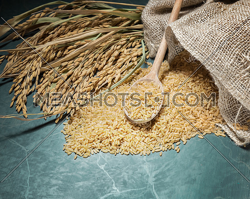 Brown rice uncooked in a bag with a pile of brown rice with over a full spoonful of rice and spike rice on table background.