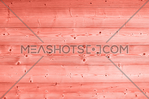 Close up background texture of coral pink color toned vintage painted wooden planks, rustic style wall panel