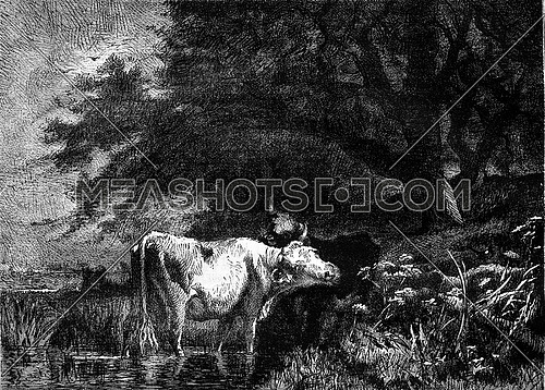 1877 Exhibition of Painting, The Source of Neslette by Van Marcke, vintage engraved illustration. Magasin Pittoresque 1878.