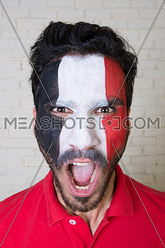 football fan face painted in Egyptian Flag colors