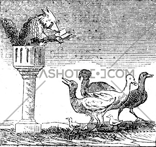 The Fox preaching, vintage engraved illustration. Magasin Pittoresque 1852.