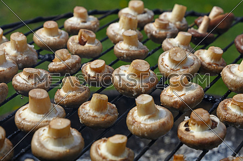 White champignon common mushrooms cooked on char grill over green background, close up, high angle view