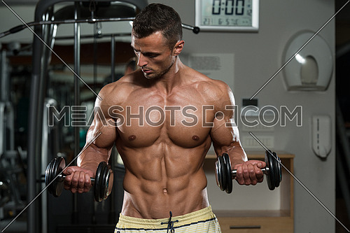 A Muscular man Exercising Biceps With Dumbbells in a gym