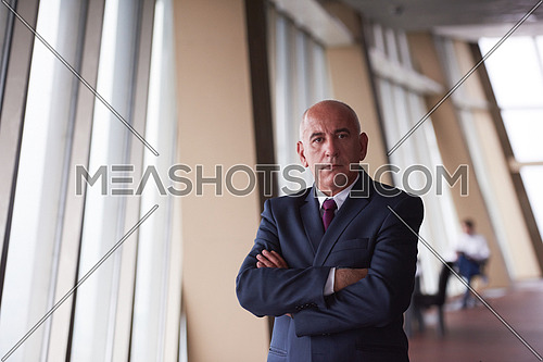 portrait of senior business man alone in modern corporate  office indoors